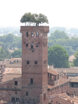 climbing the Torre Civica delle Ore Italy Trip 2009, Lucca, Italy Date: Thursday July 02, 2009