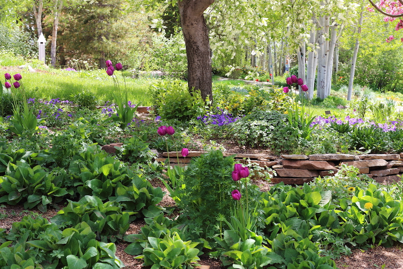Yampa River Botanic Park Steamboat Springs, Colorado Date: Monday May 30, 2016