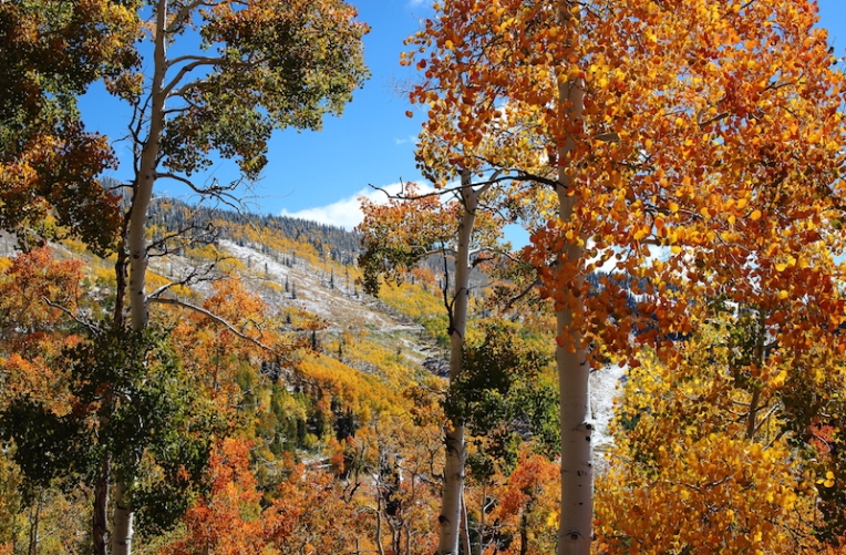 fall snow hike on the mountain Steamboat, Colorado, September, 2016