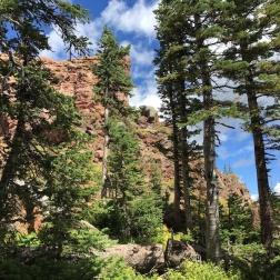 rabbit ears hike, Steamboat Springs, Colorado, September, 2016
