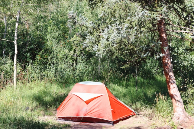 Difficult Campground, near Aspen, Colorado, August, 2016