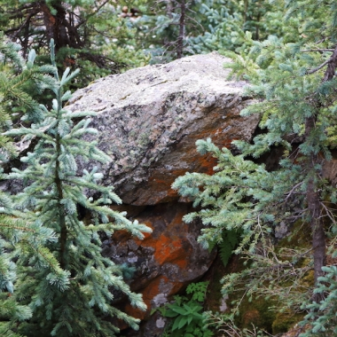 lost man trail - lower - hike Aspen side of Independence Pass, Colorado Date: Wednesday August 17, 2016