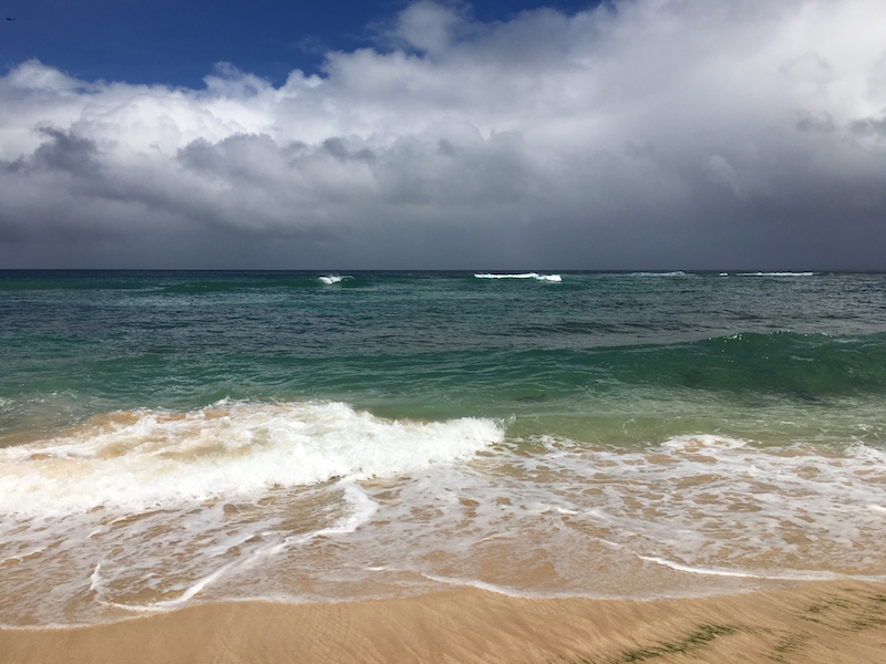 Laniakea Beach (Turtle Beach) North Shore, Oahu, Hawaii Date: Friday September 16, 2016