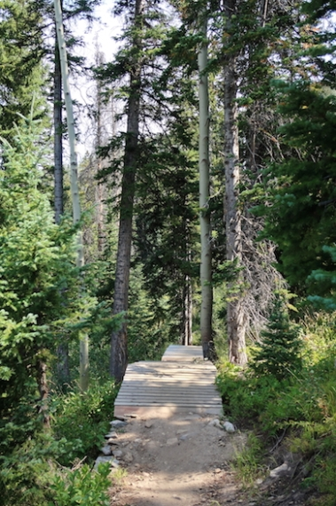 summer Pioneer Trail hike Date: Wednesday August 30, 2017