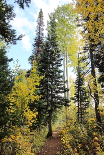 Fall Mountain Hike Date: Sunday September 24, 2017