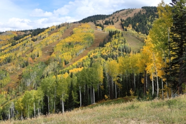 fall mountain - quick ride up the gondola Date: Saturday September 30, 2017