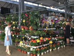 Mercato Albinelli Modena, Italy Date: Wednesday June 07, 2017