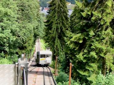 cog wheel train to Mürren